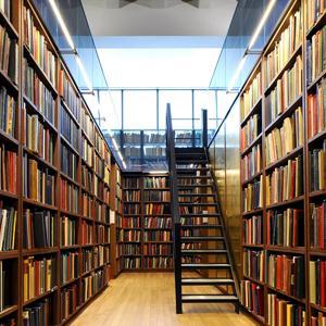 Библиотеки Скопина