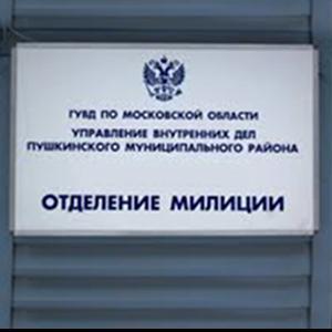 Отделения полиции Скопина