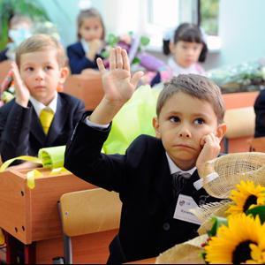 Школы Скопина